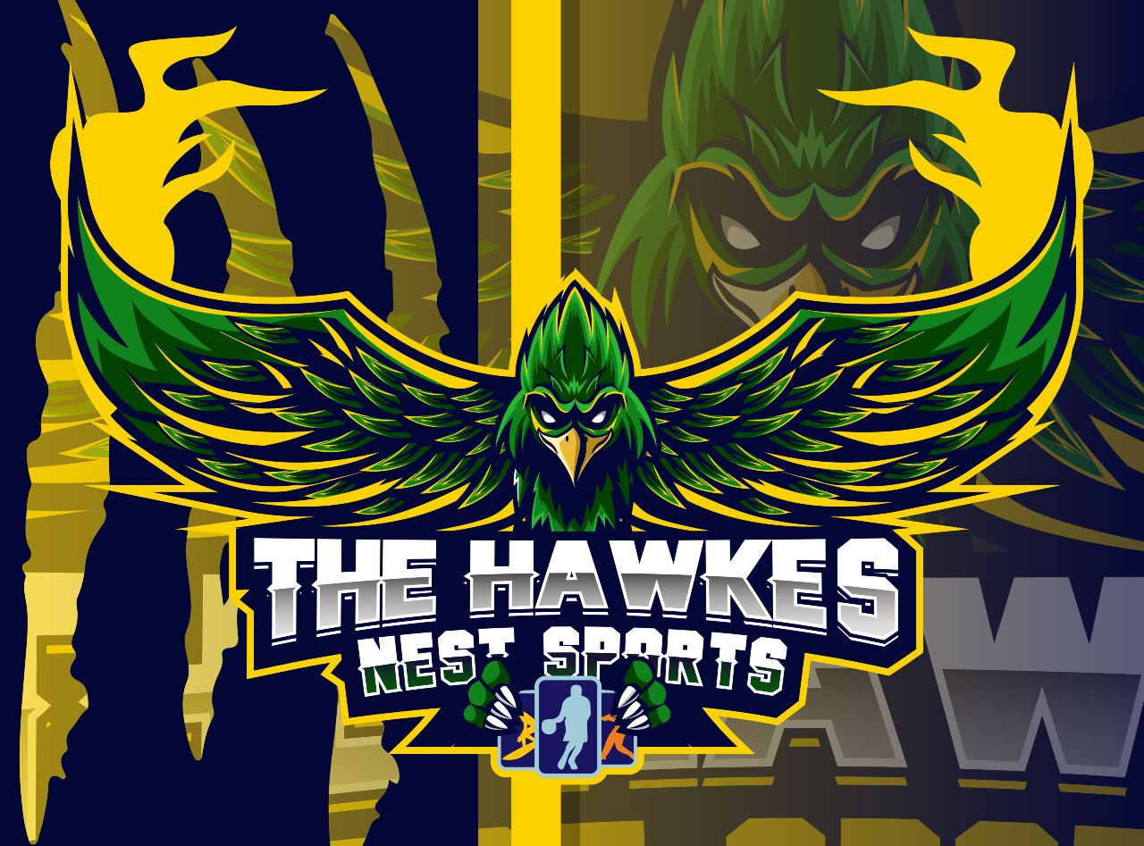The Hawke's Nest Sports Card Shop Woodruff WI